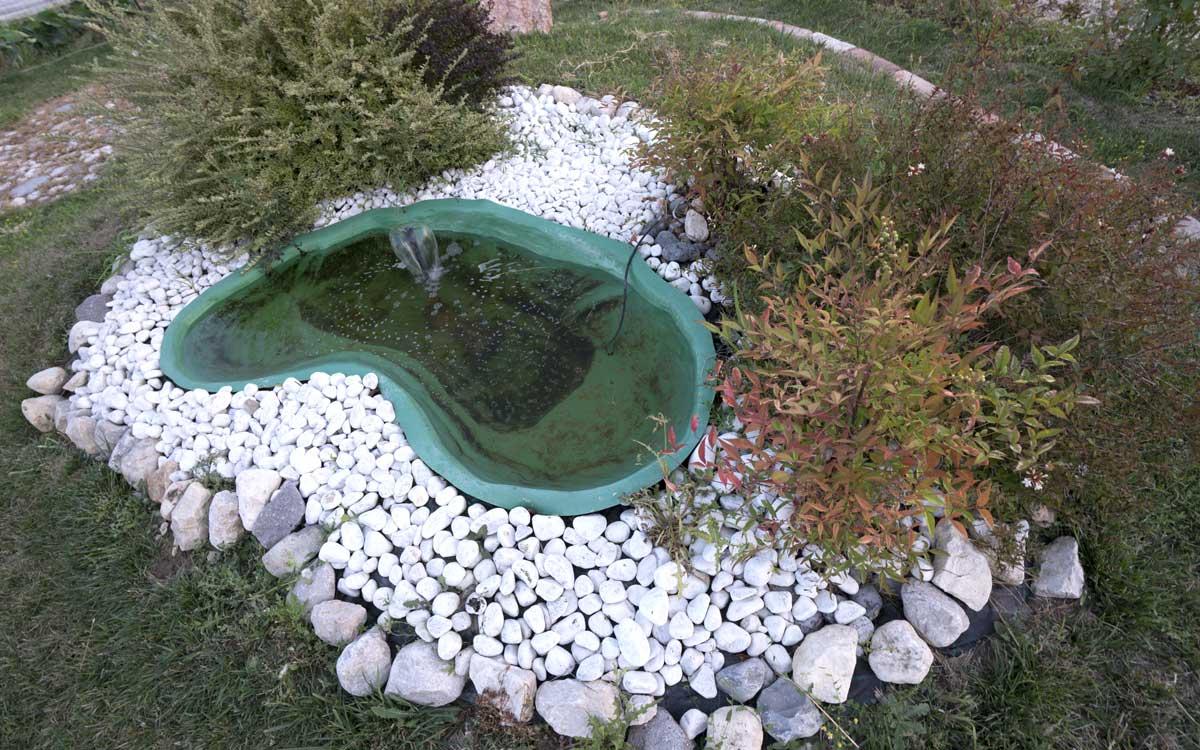 Vasca per pesci da giardino decorazioni per la casa for Vendita pesci da laghetto online