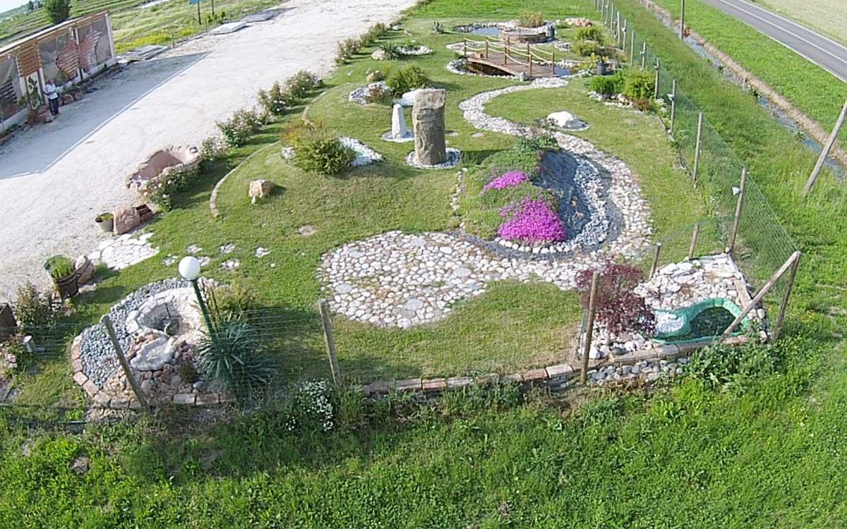 vasche e laghetti da giardino