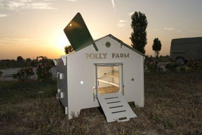 polly farm