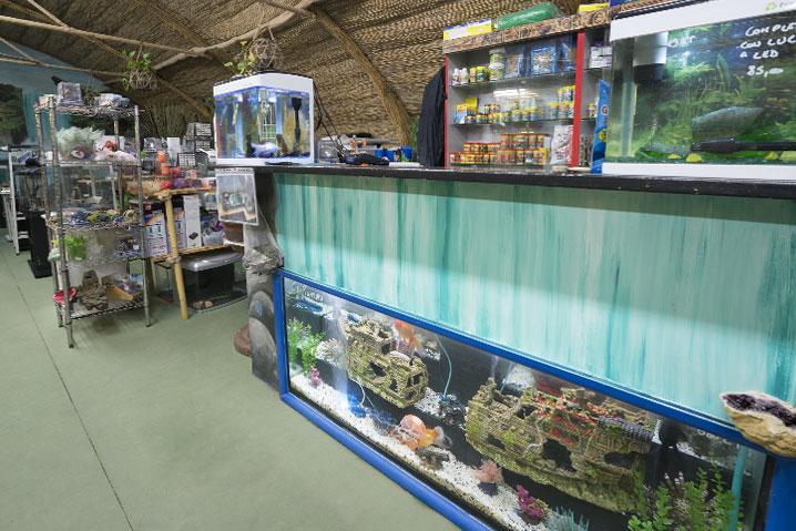 punto vendita acquari e accessori